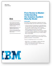 White paper: Understanding the analytics quotient maturity model