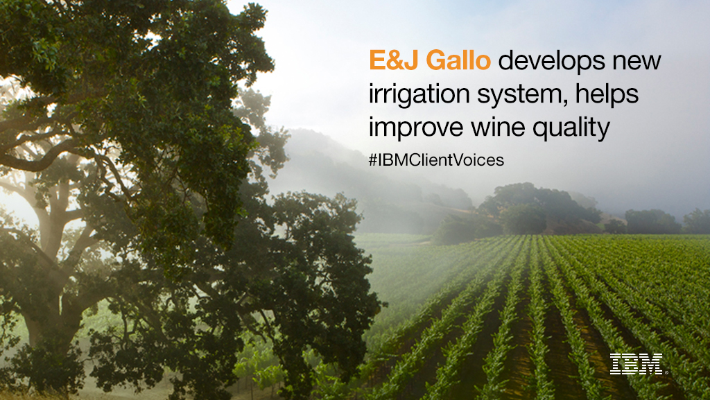 e j gallo wineries a case study Cas ee studyy e & j gallo winery i ntegrated case study • energy efficiency and demand response using pg&e rebates and incentives boosts the return on.