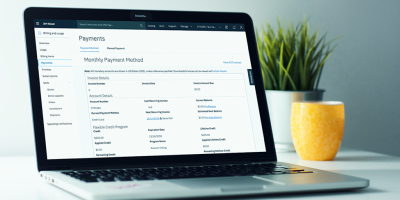 Image of the Payments page in the IBM Cloud console