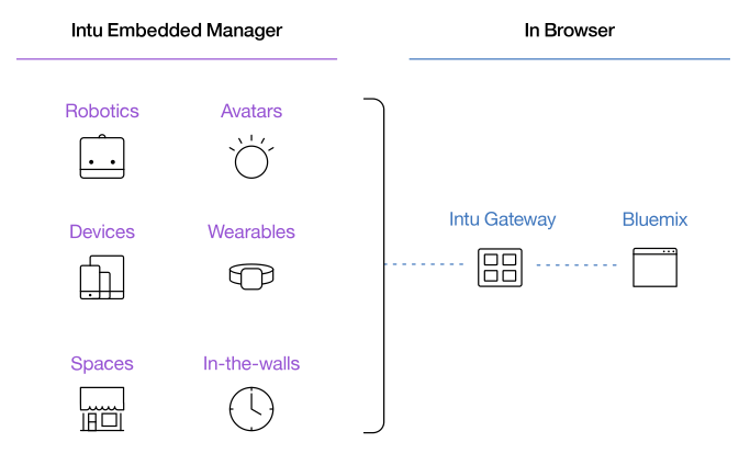 Diagram of IBM Intu Embedded Manager