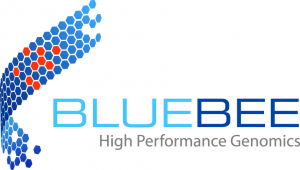 Bluebee IBM strategic partner