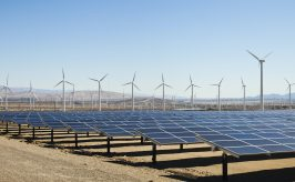 solar panels and wind mills in the desert