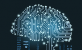 image of a digitized brain representing artificial intelligence