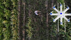 The benefits of sustainable agriculture and how we get there