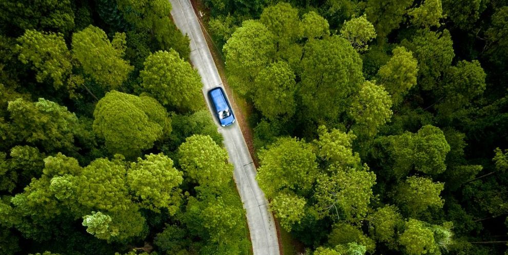 Overhead view of car driving through road surrounded by trees