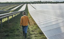 Young female farmer walking away from camera, between solar panels on her solar farm