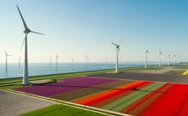 Wind turbines in a colorful field