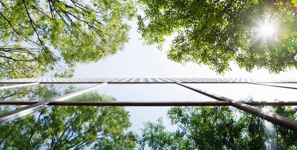 Glass-walled building reflecting trees.