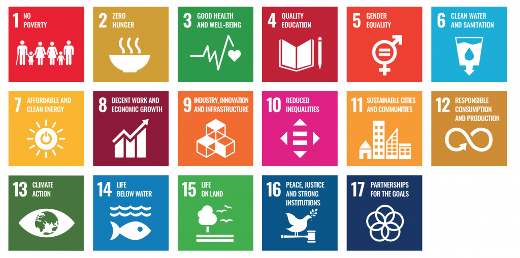 IBM and the UN Development Goals - IBM Digital Nordic