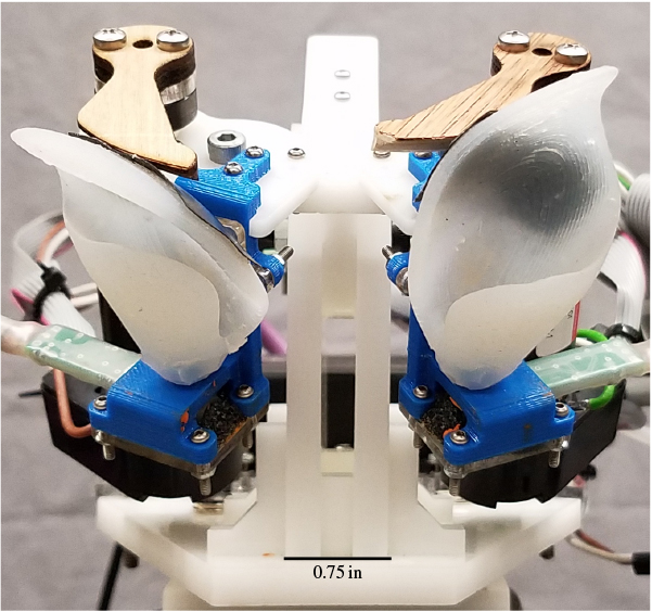 Horseshoe bat inspired robotic set-up used to record speech signals (courtesy: Virginia Tech University)
