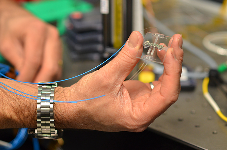"""In the next five years, networks of sensors like this miniature silicon chip trace-gas spectrometer will help us """"see"""" and manage environmental pollutants. This sensor design uses IBM's expertise in silicon photonics to detect methane with infrared light brought in via optical fibers. Thousands of sensors can be manufactured on each silicon wafer, allowing large-scale sensor networks at low cost."""