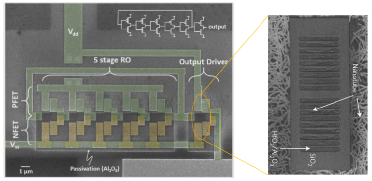 "All elements have to work simultaneously in a functional ring oscillator. Pictured: Top-view scanning electron microscopy image of a 5-stage CNT ring oscillator and CNTs placed trenches. (Figure 1B in ""High-speed logic integrated circuits with solution processed self-assembled carbon nanotubes"", published in Nature Nanotechnology.)"