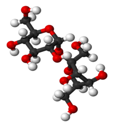 Conventional ball and stick model of the sucrose molecule [Source: http://www.gustrength.com/glossary:compound]