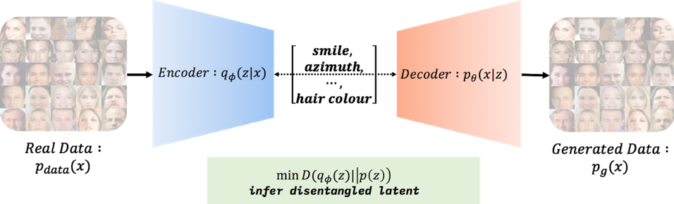 Disentanglement of Latent Factors of Variation with Deep