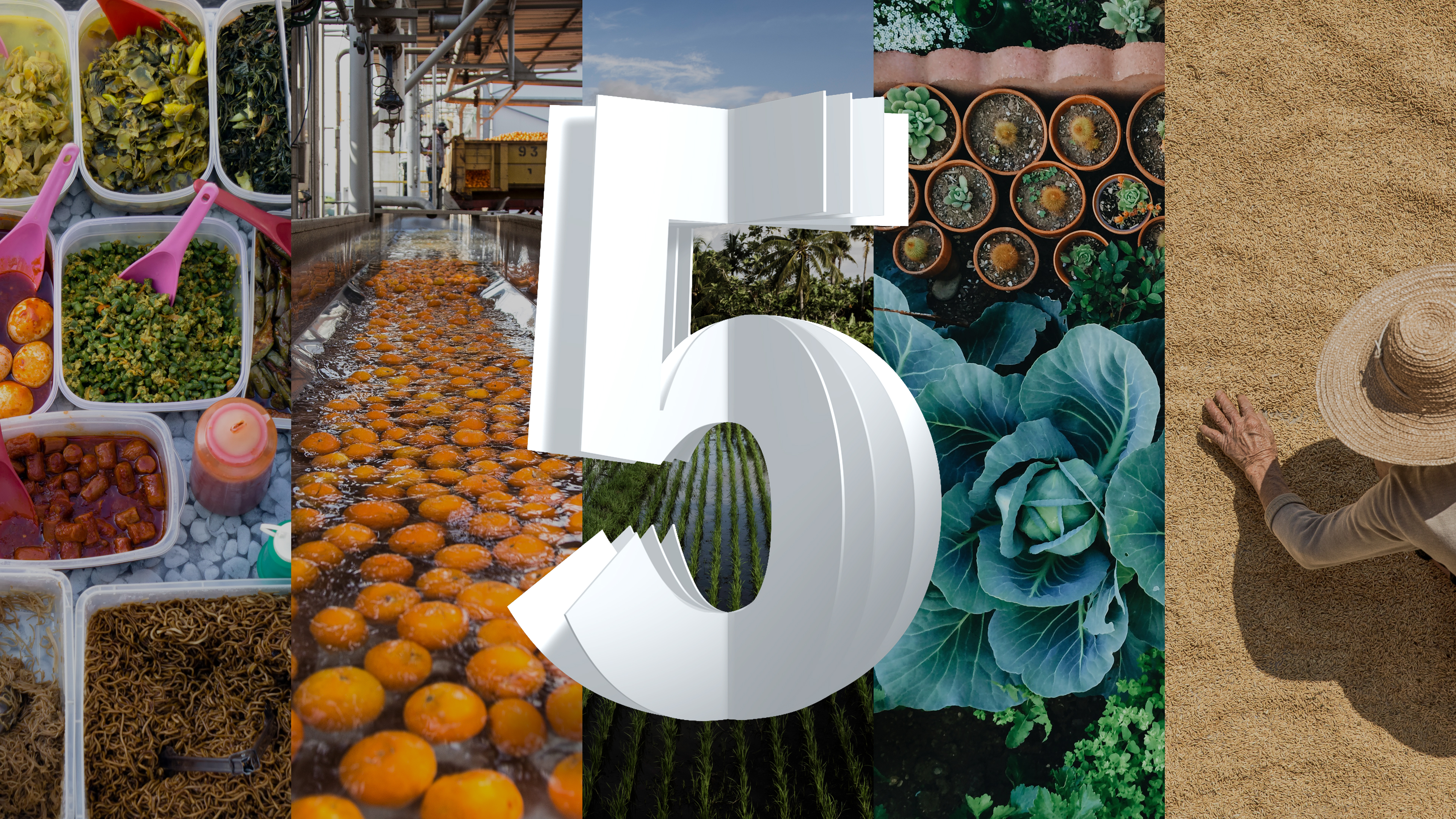From Seed to Shelf: How IBM Innovations Will Transform Every Stage