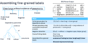 Figure 3. Illustration of assembly of fine-grained labels