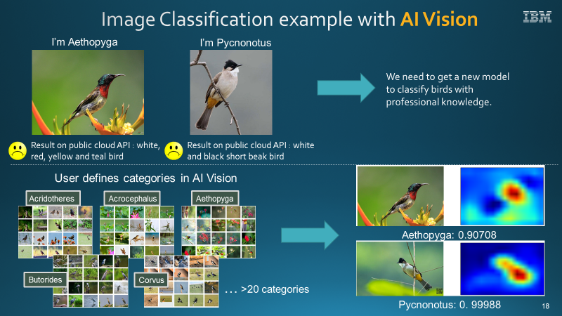 Image Classification example using AI Vision
