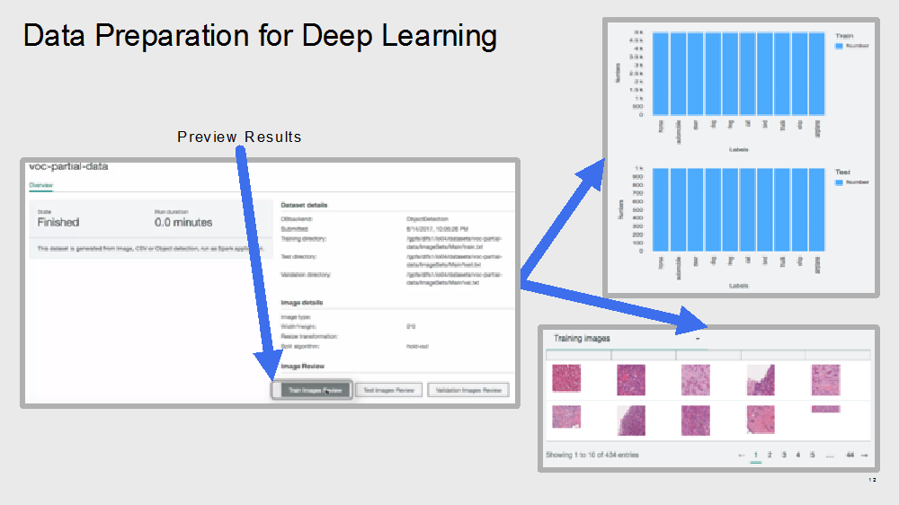 data preparation for deep learning, PowerAI Enterprise