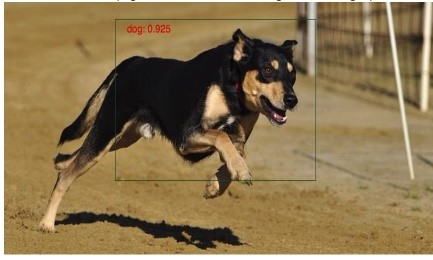 Figure 2: Static Image Object Detection