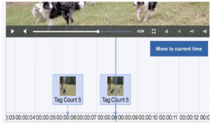 Figure 3: Video Object Detection