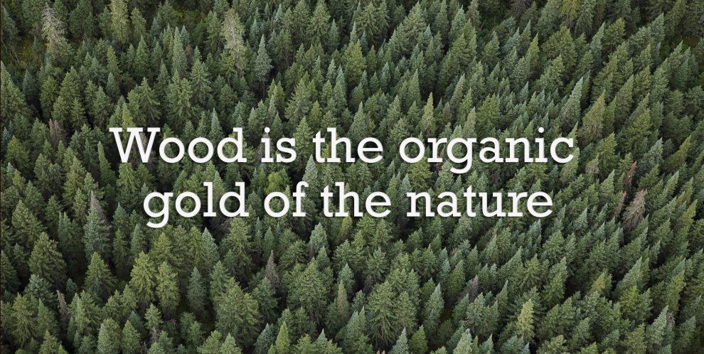 Luonnon vihreä kulta