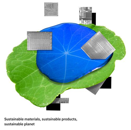 サスティナブルな植物のイメージ