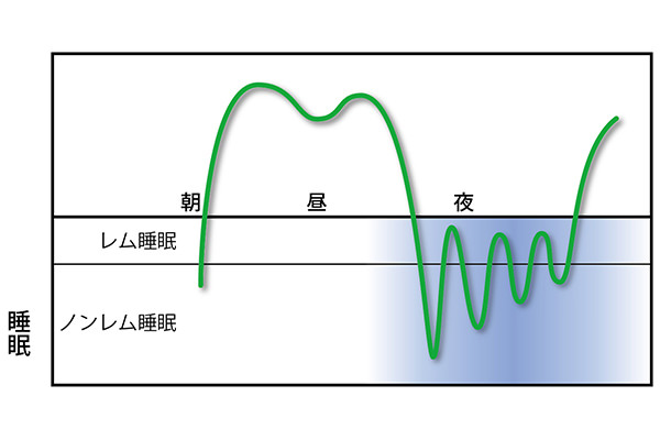 【図3】深く眠るノンレム睡眠のときも、脳は休んでいない。