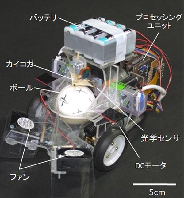昆虫操縦型ロボット