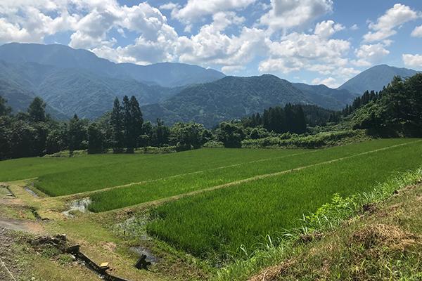 小谷村の風景 提供:松井加奈絵氏