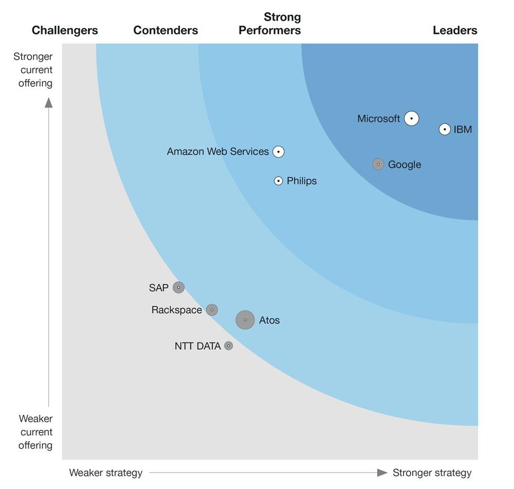 Forrester Wave diagram