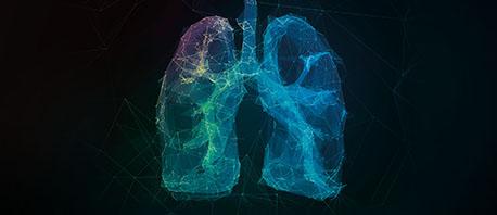 Comment faites-vous pour trouver un traitement plus efficace contre la tuberculose?