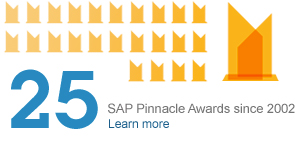 25 SAP Pinnacle Awards since 2002. Learn more