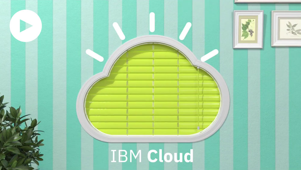 The IBM Cloud: Insights