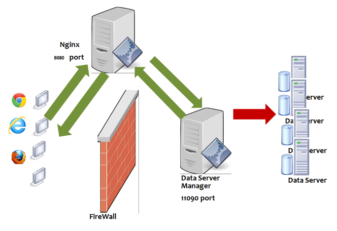Using Nginx to enable Data Server Manager to bypass a firewall