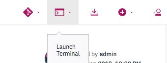 Launch Terminal