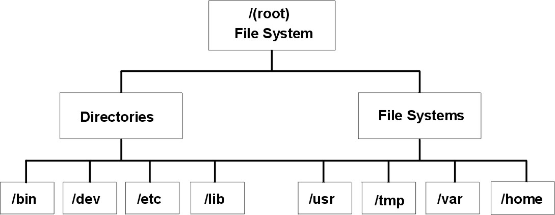 file system structure Managed File Transfer