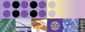 Logiciels WebSphere pour les PME