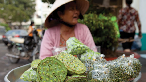 Vietnamese woman on bike transporting cabbage