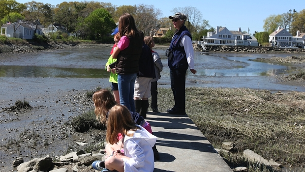 Students visit the Farm Creek Preserve at low tide and are able to see fiddler crabs and mussels.