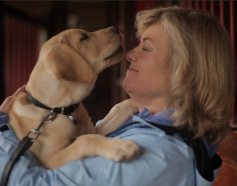 Lorraine together with TJ—IBM Watson may help Guiding Eyes determine if TJ will graduate from guide dog training.