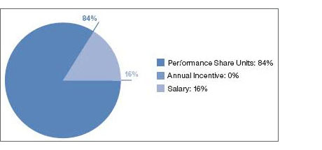 Describes compensation mix for SVP 12% salary, 17% other stock-based grants, 71% performance share units.