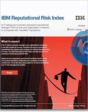 IBM Reputational Risk Index  IBM