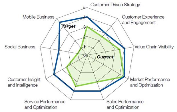 Costumer Driven Strategy, Costumer Experience and Engagement, Value Chain Visibility, Market Performance and Optimization, Sales Performance and Optimization, Costumer Insight and Intelligence, Social Business, Mobile Business.