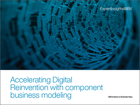 Component business modeling: A new perspective on cutting risk and compliance costs